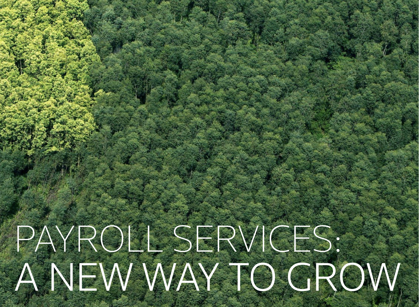 payroll service whitepaper new way to grow